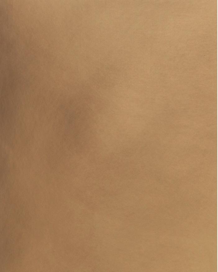 Bronze Light Patina