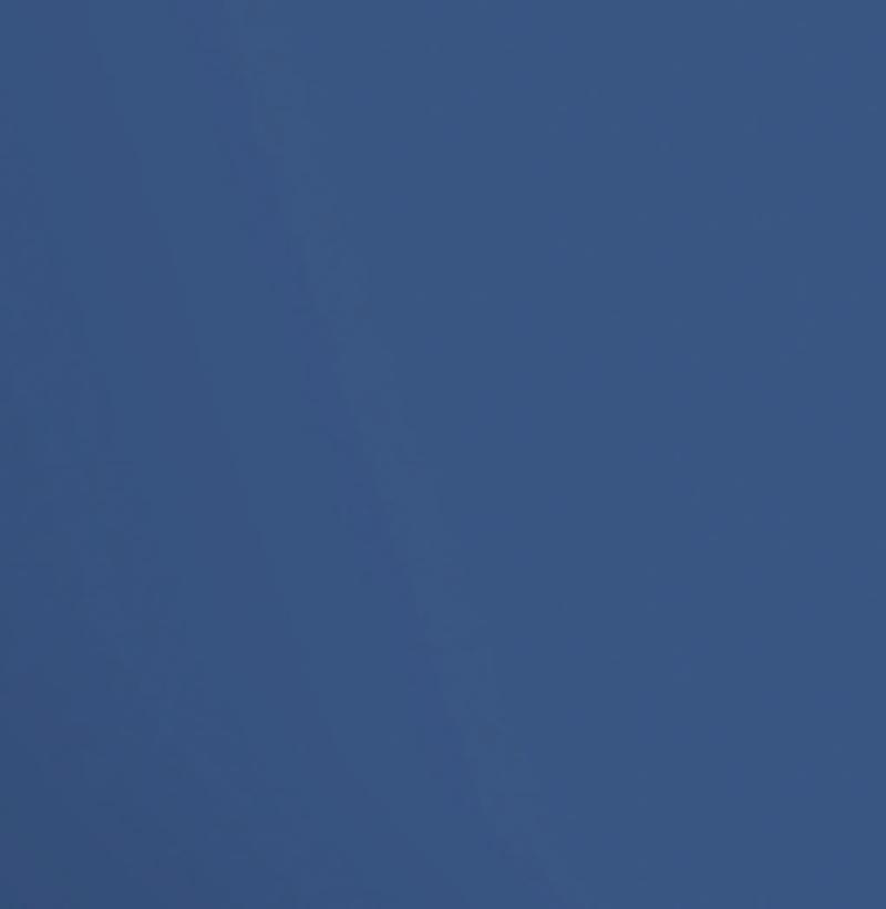Blue Flight Matte